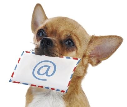 Chi-Email